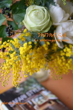 Img_1374aaa_3