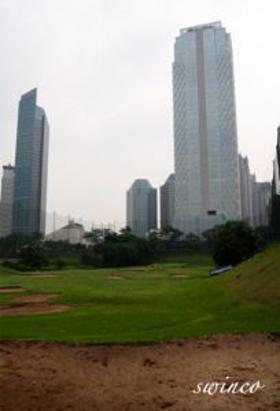 Th_golf